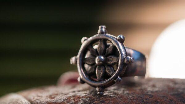 anillo timon